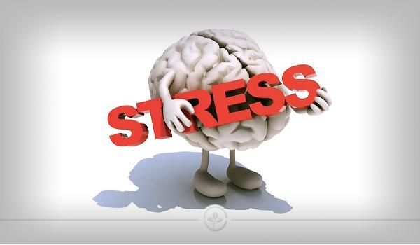 استرس شدید بی دلیل