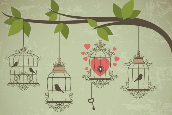عشق سالم چیست
